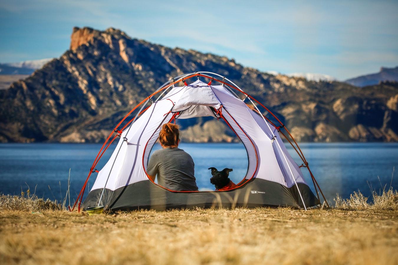 Tips voor een kampeervakantie met je hond